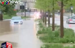 Bão lớn gây ngập lụt nghiêm trọng tại Đức, 4 người thiệt mạng