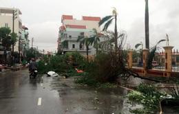Sự kiện trong nước nổi bật (24-30/7): Bão số 1 gây thiệt hại nặng ở nhiều địa phương
