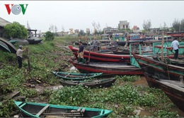 Bão số 3 đổ bộ: Thái Bình di dời 1.300 tàu cá đến nơi an toàn