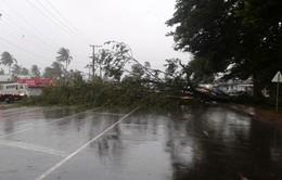 Siêu bão Winston gây thiệt hại nặng nề tại Fiji