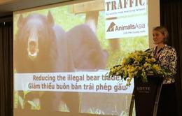 Buôn bán trái phép gấu tại Việt Nam vẫn tiếp diễn
