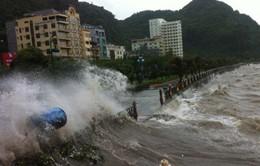 Tâm bão số 7 sẽ đi vào khu vực Quảng Ninh - Hải Phòng