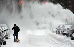 Mỹ ban bố tình trạng khẩn cấp do bão tuyết