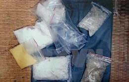 Bến Tre: Bắt giữ 11 đối tượng sử dụng trái phép ma túy dạng đá