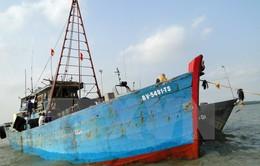 Kiên Giang: Bắt giữ một tàu vận chuyển trái phép dầu DO