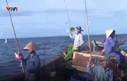 Nhộn nhịp mùa câu cá biển ở Quảng Trị