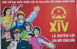 Quảng Bình có 13 khu vực được bầu cử sớm
