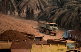 Malaysia kéo dài lệnh cấm khai thác bauxite