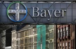Bayer sắp hoàn tất việc mua lại Monsanto với giá 66 tỷ USD