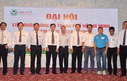 Bầu Tú tái đắc cử chủ tịch LĐBĐ TP.HCM (HFF) sau thành công của futsal Việt Nam