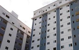 Bình Định: Rơi từ tầng 8 chung cư, bé 4 tuổi chết thảm