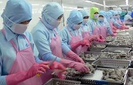 Ngành thủy sản chi hàng tỉ USD/năm để nhập khẩu nguyên liệu