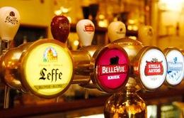Văn hóa bia Bỉ có thể trở thành di sản UNESCO