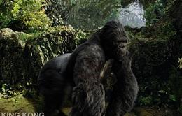 """Bên thềm năm Thân, King Kong sang """"xông đất"""" Việt Nam"""