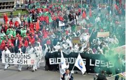 Bỉ: 10.000 người biểu tình phản đối cải cách lao động