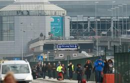 Khủng bố thách thức an ninh của châu Âu