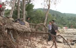 Đà Nẵng: Biển xâm thực đe dọa cuộc sống người dân