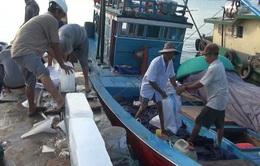 Ngư dân Quảng Trị nhận tiền bồi thường tiếp tục vươn khơi