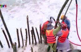 Biển Cửa Đại tiếp tục sạt lở nặng