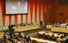 Liên hợp quốc cam kết hỗ trợ Việt Nam ứng phó với những thách thức mới