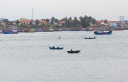 Xuất hiện cá chết rải rác vùng ven biển Quảng Bình
