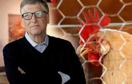 Tỷ phú Bill Gates tặng 100.000 con gà cho các nước nghèo