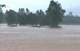 Mưa lớn và lốc xoáy gây nhiều thiệt hại tại Bình Định