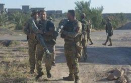Quân đội Iraq tiến sâu vào thành trì IS