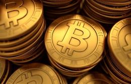 Báo động tình trạng quy mô hội thảo tiền ảo ngày càng lớn