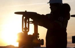 Đóng băng sản lượng: Liệu pháp đủ mạnh để cứu vớt giá dầu?