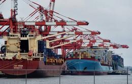 Giao dịch thương mại toàn cầu tồi tệ nhất trong 6 năm qua