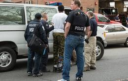 Thành phố New York (Mỹ) tổng tấn công các băng đảng xã hội đen