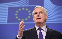 EU chỉ định trưởng đoàn đàm phán về vấn đề Brexit