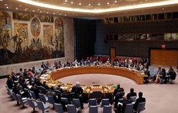 Họp khẩn về Syria: Mỹ và Nga không ngừng đổ lỗi cho nhau