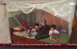 Cuộc sống khốn khó của cụ bà 84 tuổi và 6 đứa trẻ mồ côi cả cha lẫn mẹ