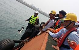 Hôm nay (28/12), kiểm tra công tác bảo vệ môi trường khu vực Formosa