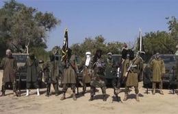 Nhiều phiến quân Boko Haram đầu hàng ở Niger