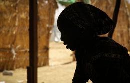 """""""Cơn ác mộng"""" Boko Haram tại Cameroon"""