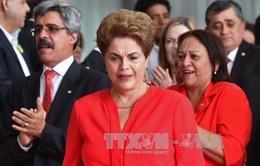Cựu Tổng thống Brazil Rousseff kháng cáo lên Tòa án tối cao
