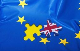 Brexit có thể dẫn tới sự tan rã của EU
