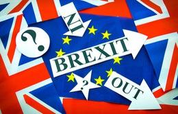 Châu Âu lo ngại hiệu ứng domino sau Brexit
