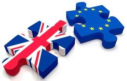 Châu Âu cứng rắn với các điều khoản Anh rời liên minh