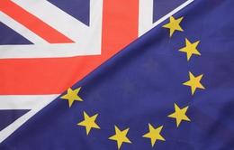 Kịch bản nào cho Anh nếu quyết định rời EU?