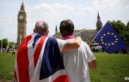 Hơn 46 triệu người ở Anh tham gia cuộc trưng cầu dân ý lịch sử