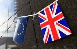 IMF: Brexit tác động đến những chính sách của thị trường