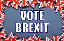 Cử tri Anh bỏ phiếu Brexit: Con cá mất là con cá to?