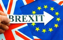 Tiếng Anh sẽ không còn là ngôn ngữ chính thức của EU