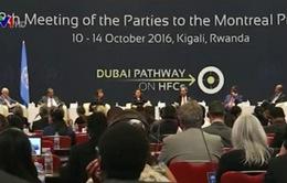 Nhóm BRICS hợp tác để đối phó với các thách thức