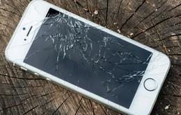 Apple mở chương trình đổi iPhone hỏng lấy máy mới