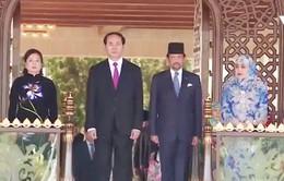 Tăng cường mối quan hệ hữu nghị Việt Nam - Brunei